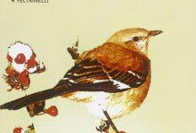 Il buio oltre la siepe di Harper Lee | Recensione di Deborah