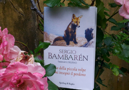 Storia della piccola volpe che mi insegnò il perdono di Sergio Bambarén | Recensione di Sandy
