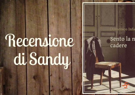Sento la neve cadere di Domenico Infante | Recensione di Sandy
