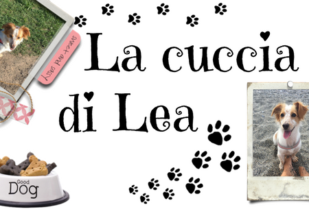 La cuccia di Lea – #CR: The Kingdom di Jess Rothenberg