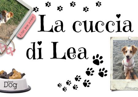 La cuccia di Lea #5: Dicembre, avventure a quattro zampe