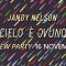 Review Party: Il cielo è ovunque di Jandy Nelson