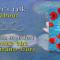 Let's talk about: Donne che comprano fiori di Vanessa Montfort