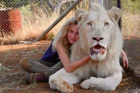 Paper Corn: Mia e il leone bianco